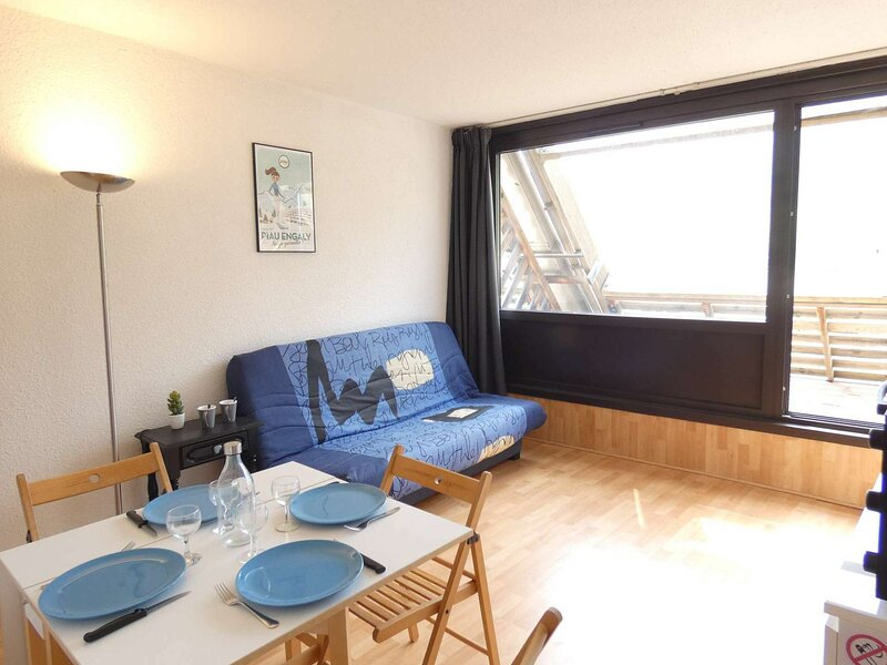 Studio 4 couchages PIAU-ENGALY, holiday rental in Bielsa