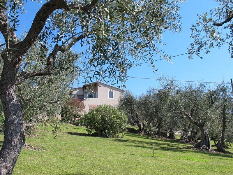 Mony, holiday rental in San Gennaro Collodi