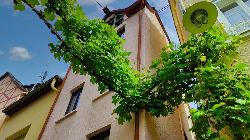 Zeller Kehr - außergewöhnliches Haus mit toller Aussicht, holiday rental in Puenderich