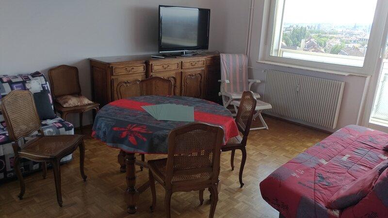 La casa du musée, holiday rental in Mulhouse
