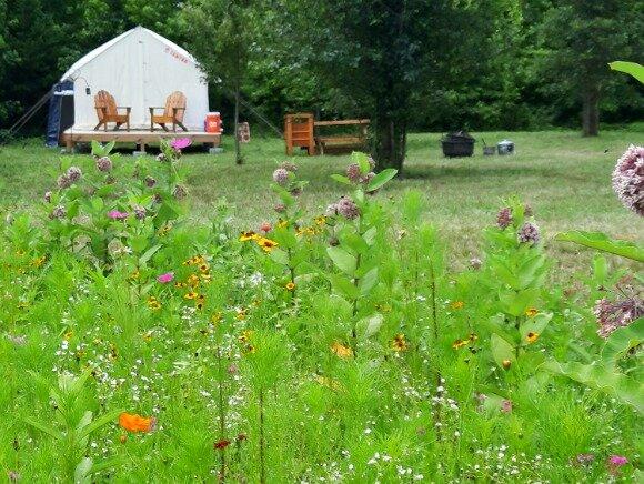Tentrr Signature Site - Shepherd's Meadow, holiday rental in Buckingham
