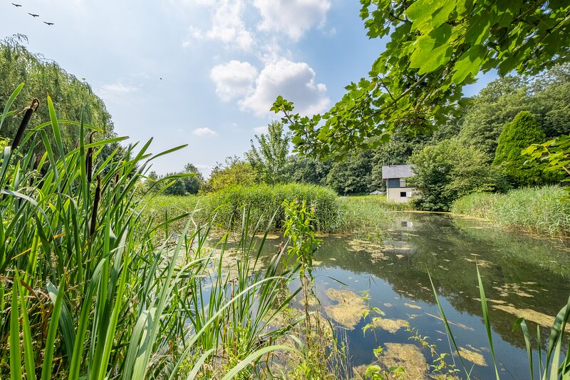 Luxury rustic mill cottage in historic country estate - Belchamp Hall Mill, location de vacances à Clare