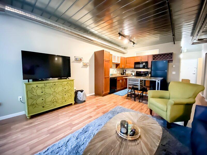 DT AA ^ 2 King Beds ^ Close to Campus & Stadium, alquiler de vacaciones en Ann Arbor