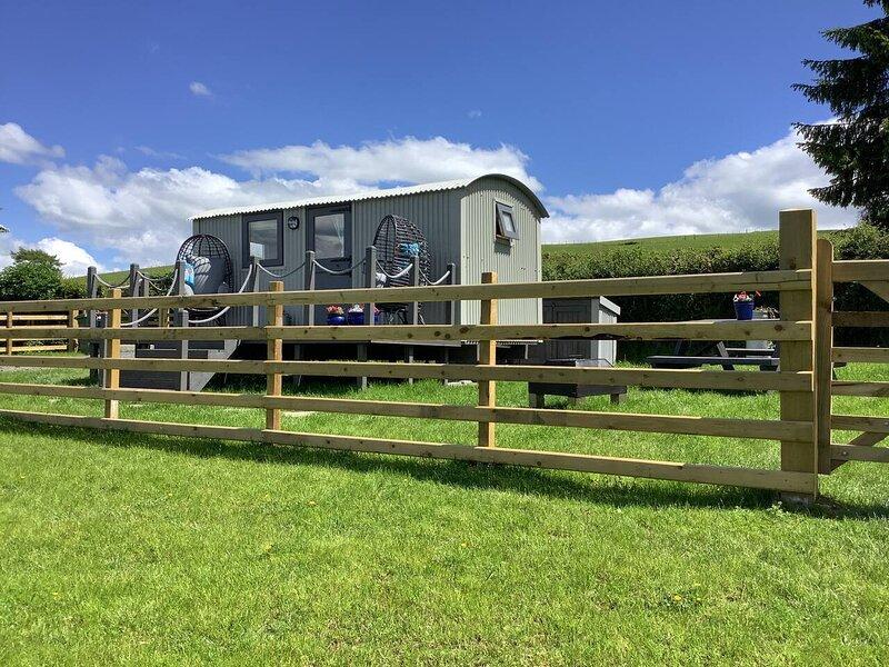 The Shepherd's Hut at Hafoty Boeth, holiday rental in Derwen