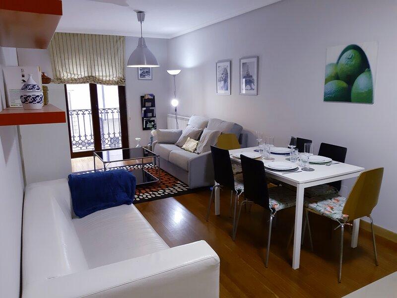 Sarria Live Apartamento, holiday rental in Becerrea
