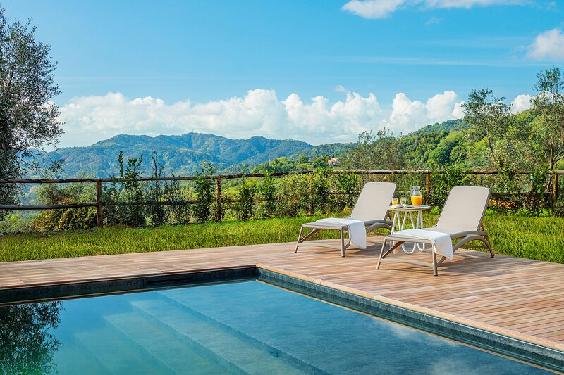 Villa Calliope ideal for family reunion or group of friends, holiday rental in Orbicciano