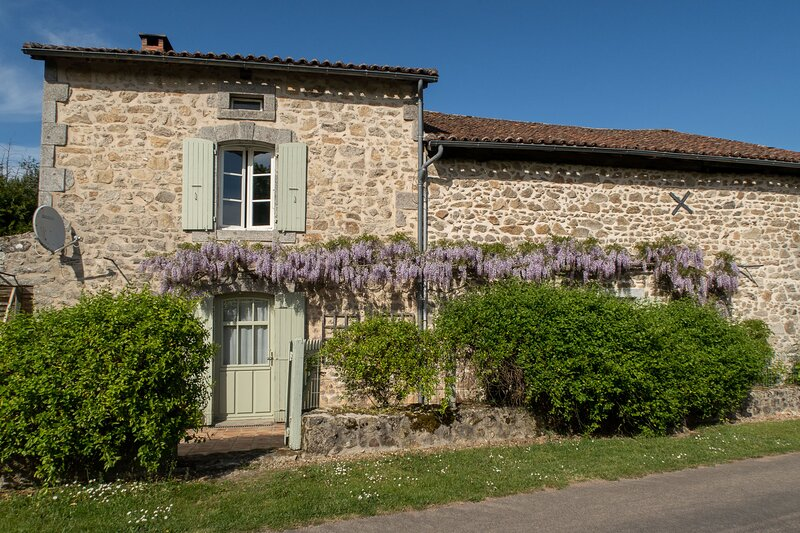 Charming traditional cottage overlooking its own vineyard, free Wifi included, holiday rental in Cussac