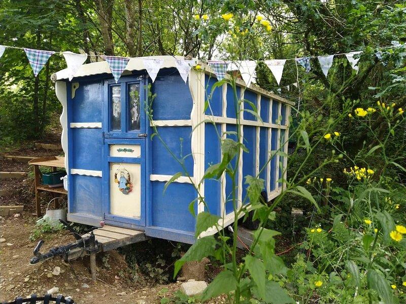 Pilgrims Shepherd's Hut - Goosewell Glynn Glamping, holiday rental in Plympton