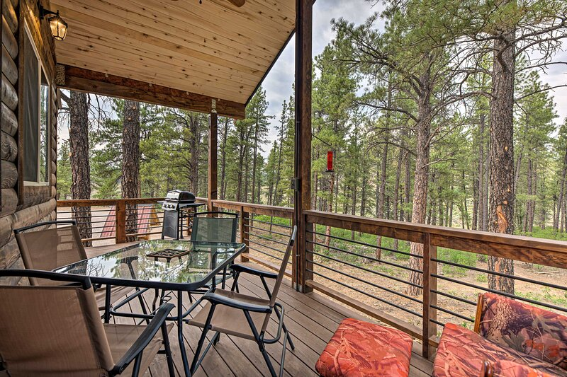 NEW! 'Cabin at the Little Ranch': Hiking On-Site!, alquiler de vacaciones en Bayfield