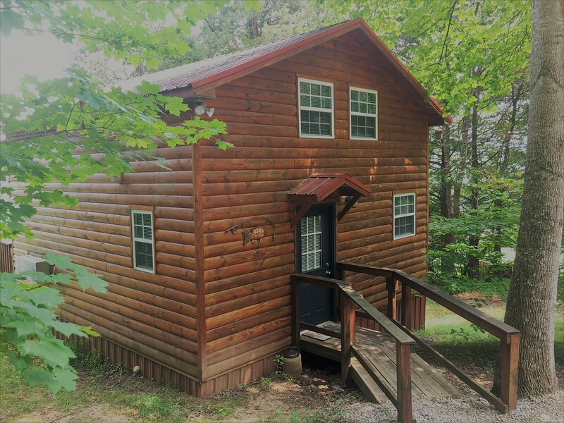 Cute, Clean Loft style Cabin Nestled in the Woods on a Private Horse Farm, alquiler de vacaciones en Sparta