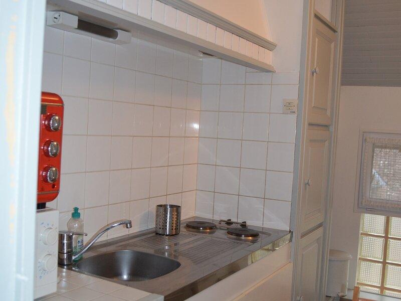 Appartement en Face des Thermes du Saint Roch à LA ROCHE POSAY, casa vacanza a Yzeures-sur-Creuse
