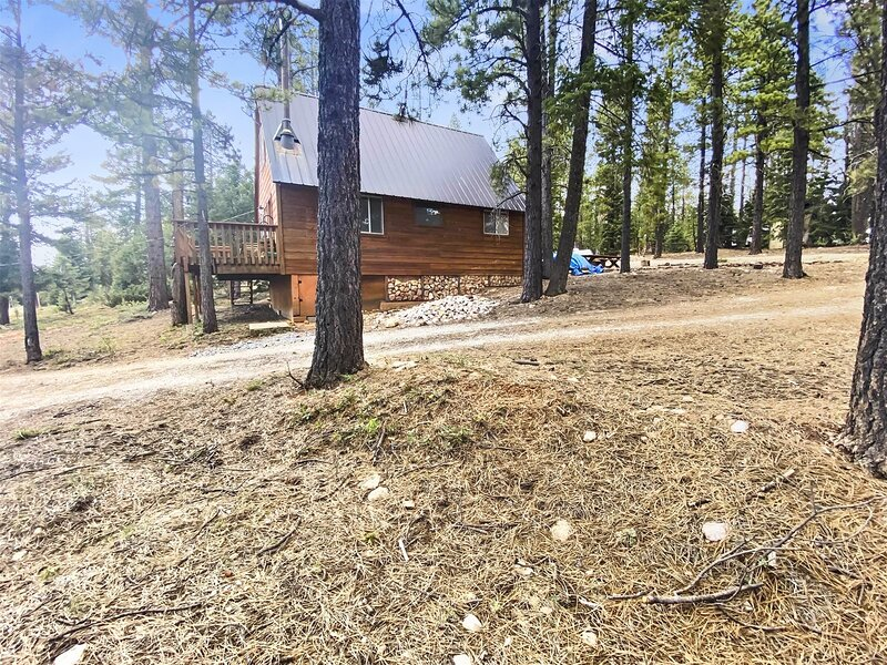 Totem Pole Lodge - private home in the woods, alquiler de vacaciones en Long Valley Junction