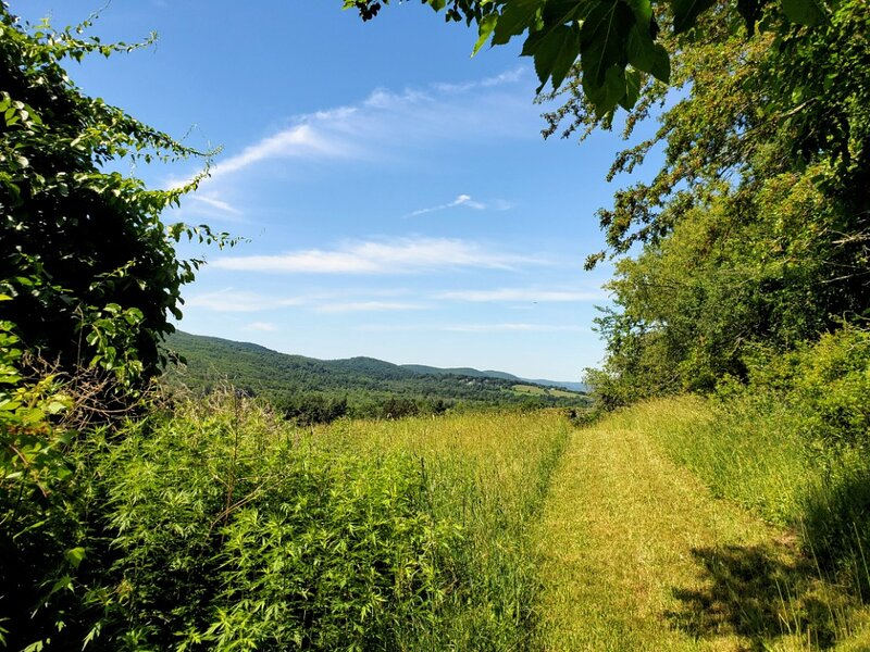 Tentrr Signature Site - Maybrook Farm - The Ridge, holiday rental in Dover Plains