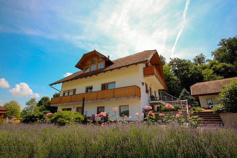 VILLA KATARINA APARTMENTS, alquiler de vacaciones en Dolenjske Toplice