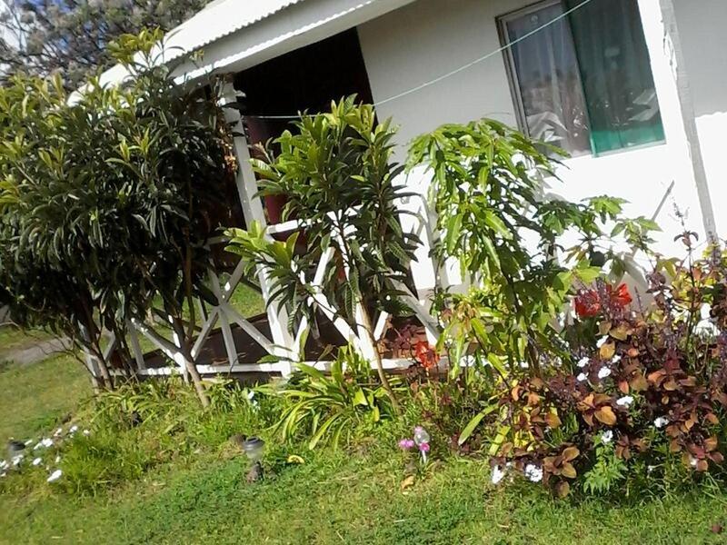 Cabanas etnicas Honu Rapanui, alquiler de vacaciones en Hanga Roa
