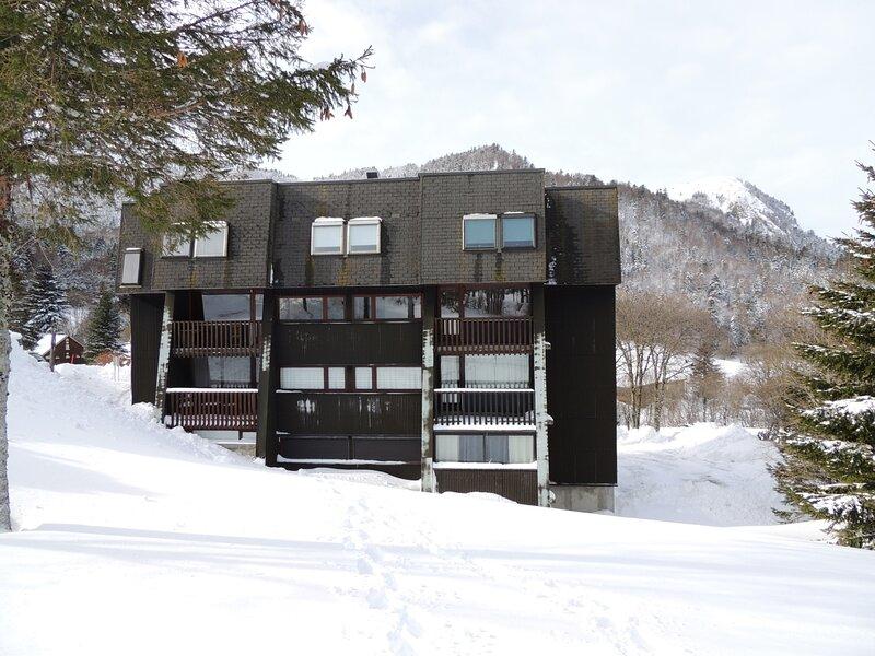 LES LONGES AU PIED DES PISTES F2  4/5 COUCHAGES, holiday rental in Chastreix