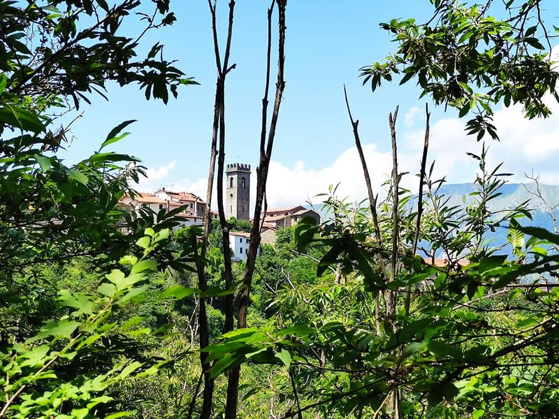 Brandeglio Relax, vacation rental in Fabbriche Casabasciana