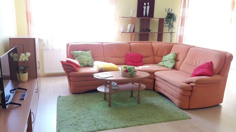 Appartement Bohatice, Karlovy Vary, holiday rental in Jachymov