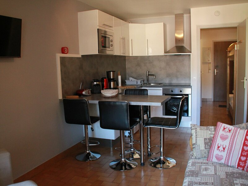 Studio coin montagne 4 personnes, holiday rental in Troistorrents