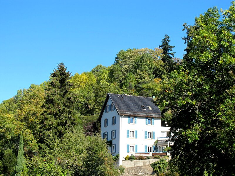 Maison Bellevue, balcony mountains views, lake, free parking, pets OK, alquiler vacacional en Breitenbach