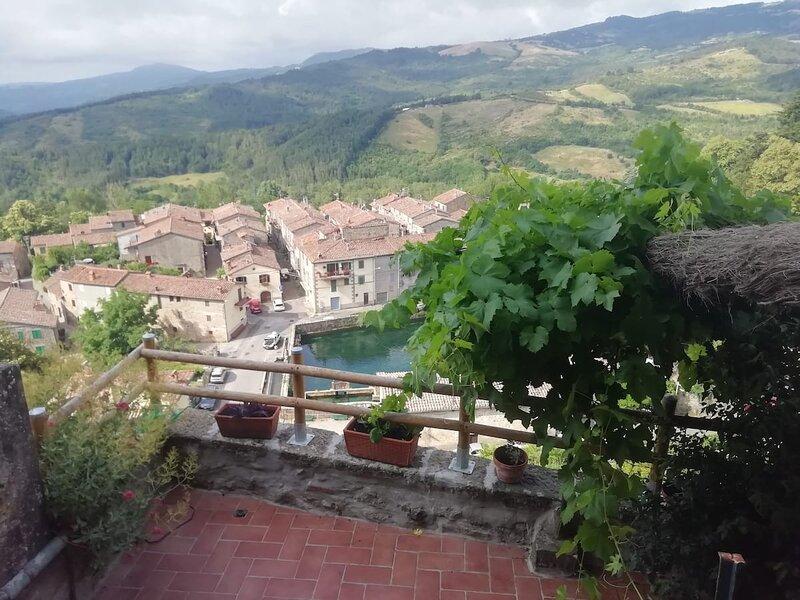 CASA LAURA - Meravigliosa vista sulla Peschiera di S.Fiora, holiday rental in Santa Fiora