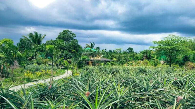 A relaxing House Farm Stay in Tagaytay, alquiler vacacional en Silang