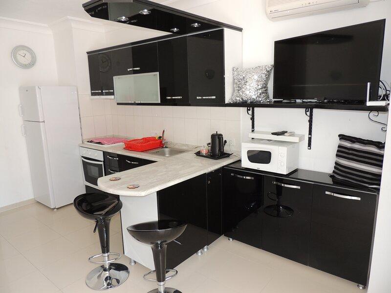 Big 1 bedroom apt, good location JH 2021-30, location de vacances à Mavisehir