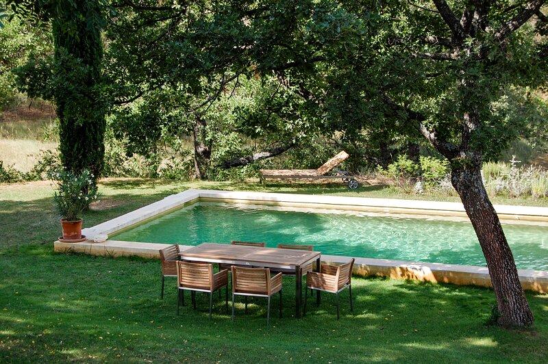 Big villa with swimming-pool & Wifi, casa vacanza a Ansouis
