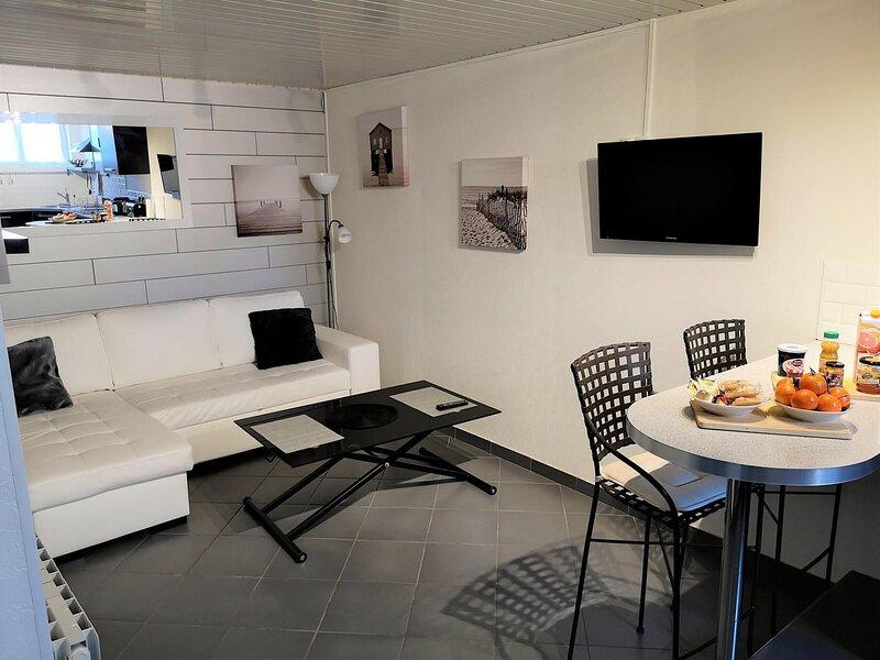 Location Duplex 52m² au coeur de Troyes, alquiler de vacaciones en Fontaine-les-Gres