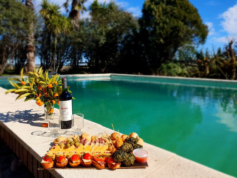 Estancia La Diferencia - peace, nature, pool, animals and comforts, holiday rental in Province of Buenos Aires