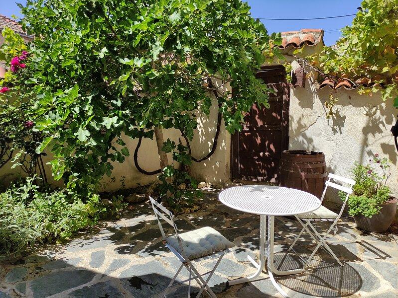 La Antigua casa del Cartero, holiday rental in Bernuy de Porreros