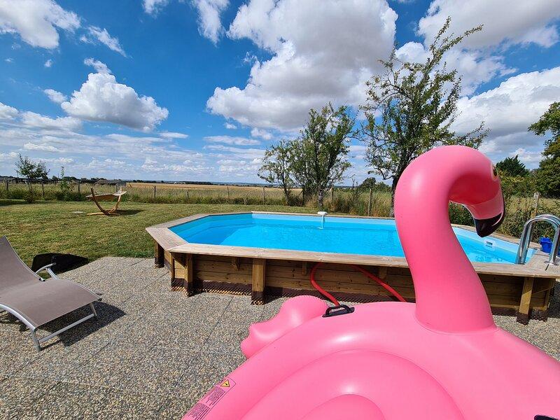 Tilloux, holiday rental in Buzancais