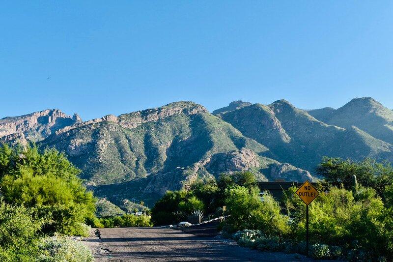 Catalina Foothills Oasis, aluguéis de temporada em Catalina Foothills