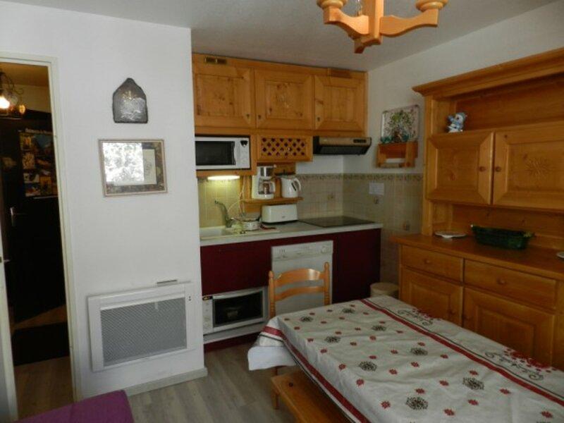 Appartement au pied des pistes résidence les gentianes 1, alquiler vacacional en La Ferriere