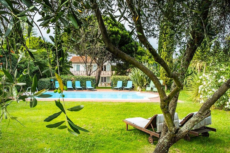 Renovated ground floor Villa Céret, pool, big garden, Ferienwohnung in Ceret