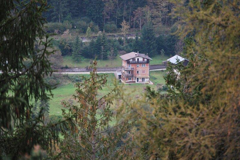 Pedibosco bed la camera al margine del bosco e ai piedi delle montagne, vacation rental in Tai di Cadore