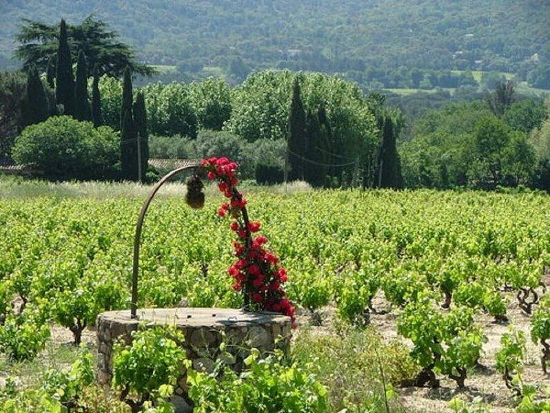 THE MAGICAL PROVENCAL CHARM IN A 16TH CENT PLAN DE LA TOUR FARMHOUSE-SUPERB!, casa vacanza a Plan de la Tour
