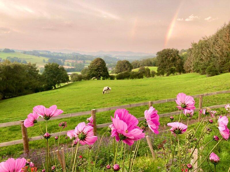 Inviting 5 Beth Caravan in Corwen North Wales, vacation rental in Carrog