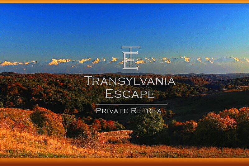 Transylvania Escape Apartment, vacation rental in Richis