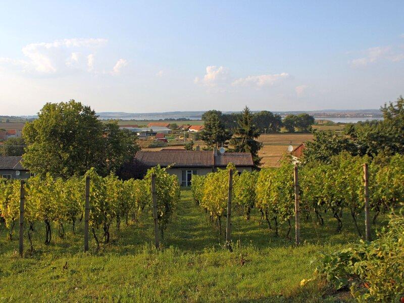 Milovice, holiday rental in Mutenice