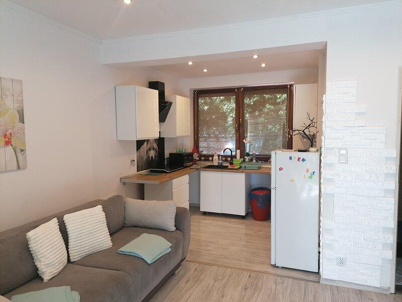 apartament zielony, vacation rental in Ustron