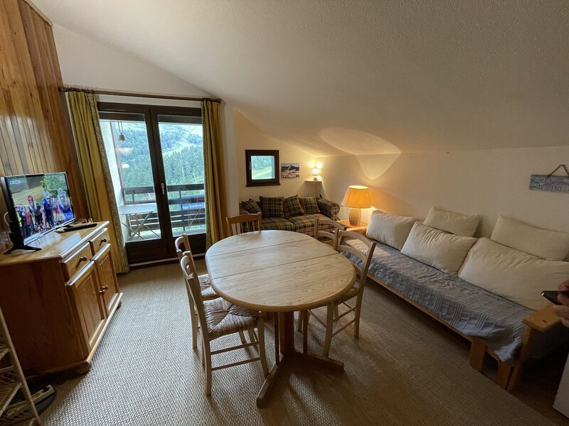 Appartement surplombant la station, alquiler de vacaciones en Vic-sur-Cere