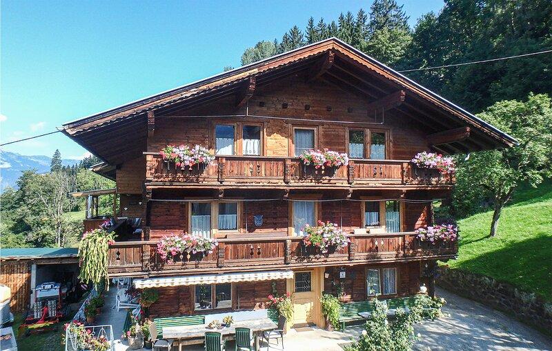 Beautiful home in Hart im Zillertal with WiFi and 5 Bedrooms (ATA001), location de vacances à Hart im Zillertal