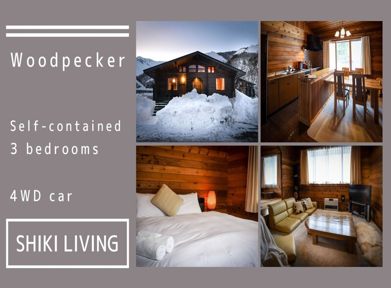 Woodpecker Chalet 3 bedroom LOG HOUSE with a CAR, holiday rental in Nagano Prefecture