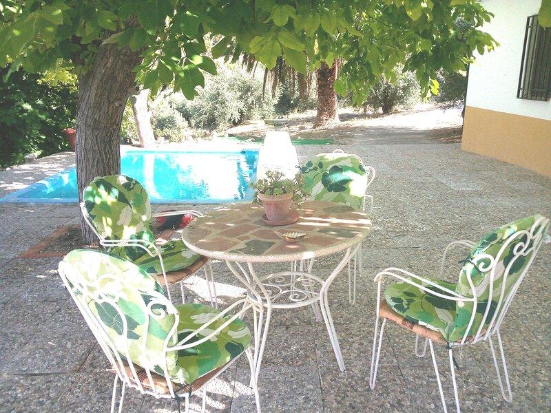 Spacious house with swimming-pool, alquiler vacacional en Jaén