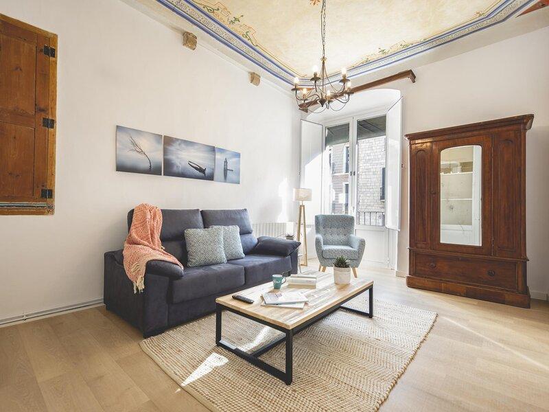 Bravissimo Plaça del Vi, Authentic Historic Apartment, holiday rental in Sant Gregori