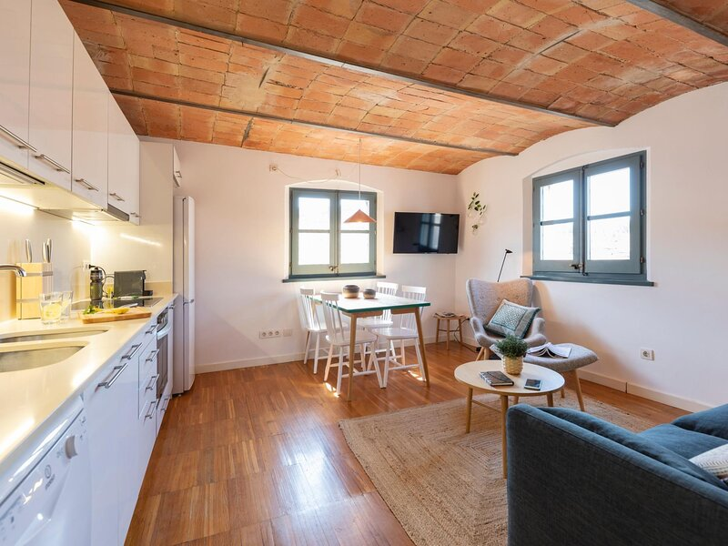 Atic Raims - Holiday apartment in Girona, holiday rental in Sant Gregori