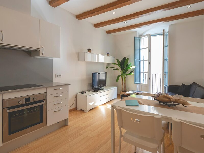 Plaça Raims - Holiday apartment in Girona, holiday rental in Sant Gregori