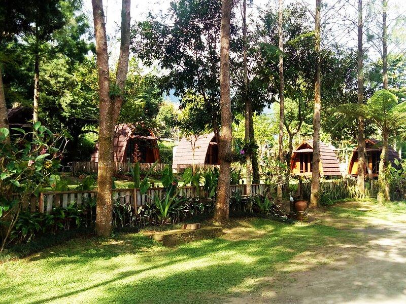 Oak Tree Bali, holiday rental in Munduk