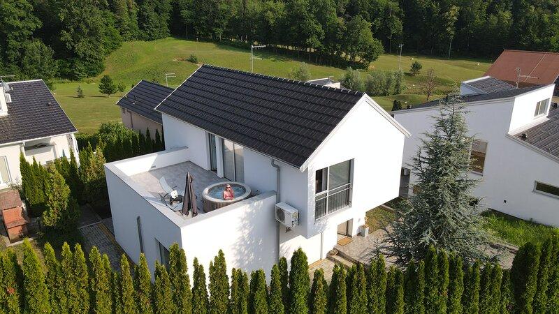 Villa Martina - holiday house, vacation rental in Sveti Martin na Muri